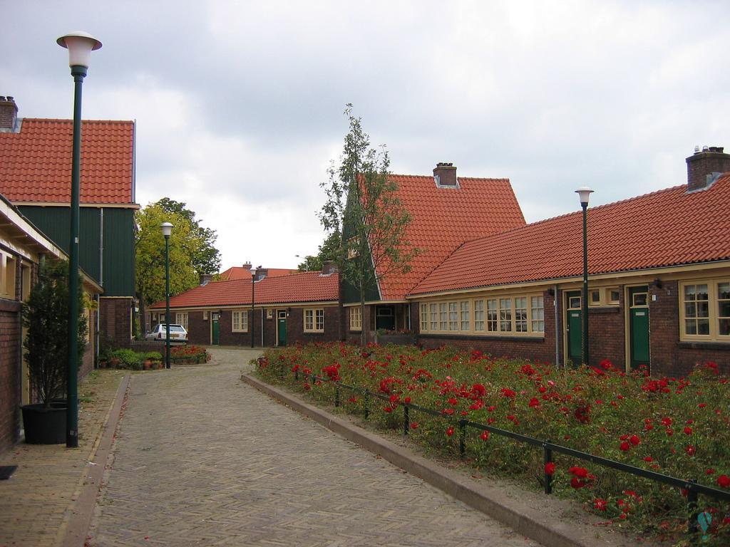 Complejo de viviendas municipales 11